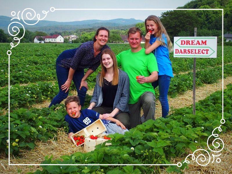 Wir lieben Erdbeeren